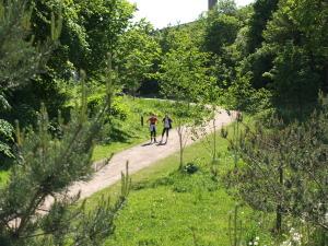 Grøndalen - en smal grøn kile for cyklister og gående. Foto: Arkiv
