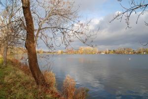 Damhussøen en efterårsdag. Foto: DN