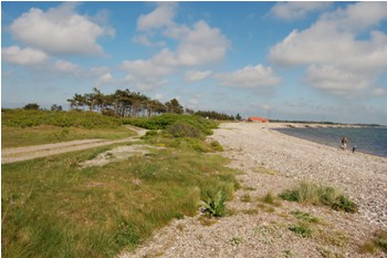Draget Strand