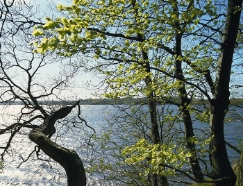 Esrum Sø's omgivelser