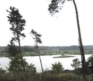 Ibjerg_TGR_1