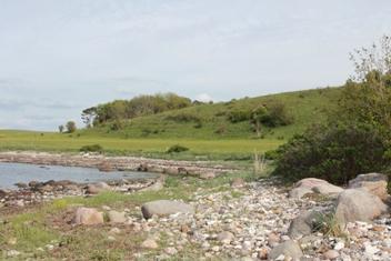 Kyndby kystskrænter