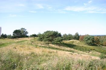 Lindbjerg