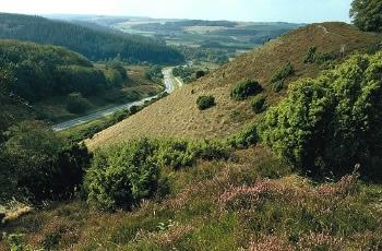 Rold Skov – Gravlevdalen