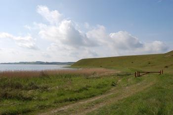 Nors Sø og Tved Klitplantage