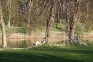 Slotssøen_Forårsstemning_BM