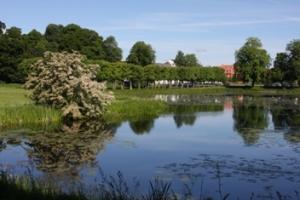 Slotssøen_og_Ridebanen_BM