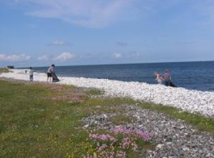 Strand_ved_Fornæs_Fyr_Affaldsindsamling_Chris_Rasmussen