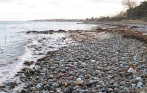 Strandskovgård_TGR