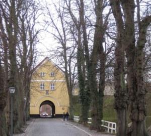 Træer_og_udsigt_Nyborg_TGR